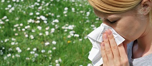 4 Spring Allergy Findings Pharmacy Techs Should Know