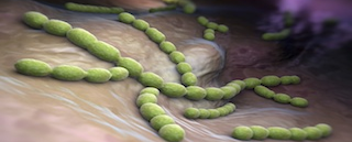 Latest Advancements in Antimicrobial Therapy
