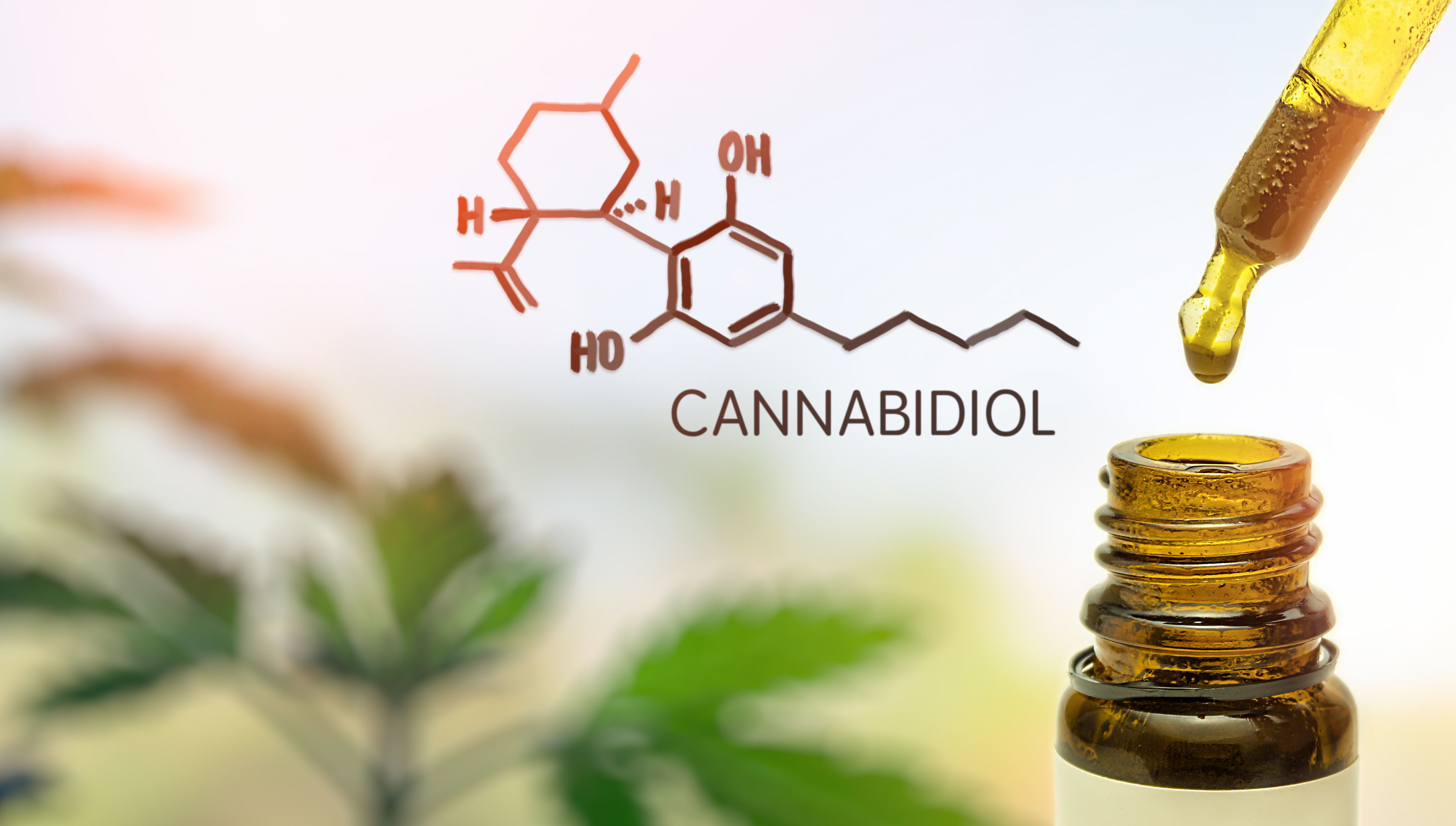 Trending News Today: Clinical Trial to Test CBD for Parkinson Disease-Related Psychosis