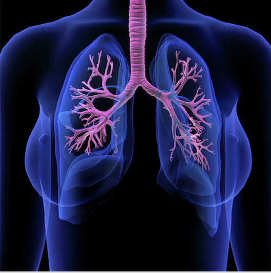 Reaching Out in Cystic Fibrosis: Pharmacotherapy of Cystic Fibrosis and the Role of the Specialty Pharmacist