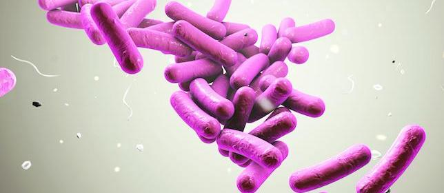 Daily Probiotics May Reduce Kids' Need for Antibiotics