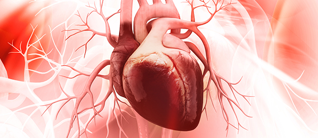Affairs of the Heart: Cardiovascular Disease in Women Vs Men