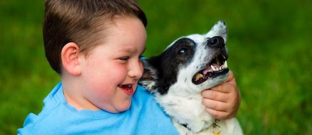 Study: Therapy Dogs Reduce ADHD Symptoms in Children
