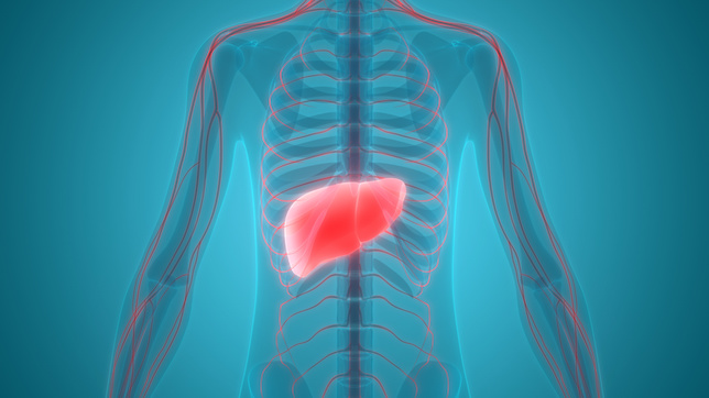 What Are Treatment Approaches to Liver Cancer?