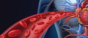 Can Multivitamins Curb Hypertension?